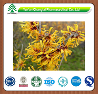 GMP factory supply Herb natural Hamamelis mollis P.E.