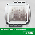 Vanq 300W 7-band COB LED grow chip for led grow light hydroponic