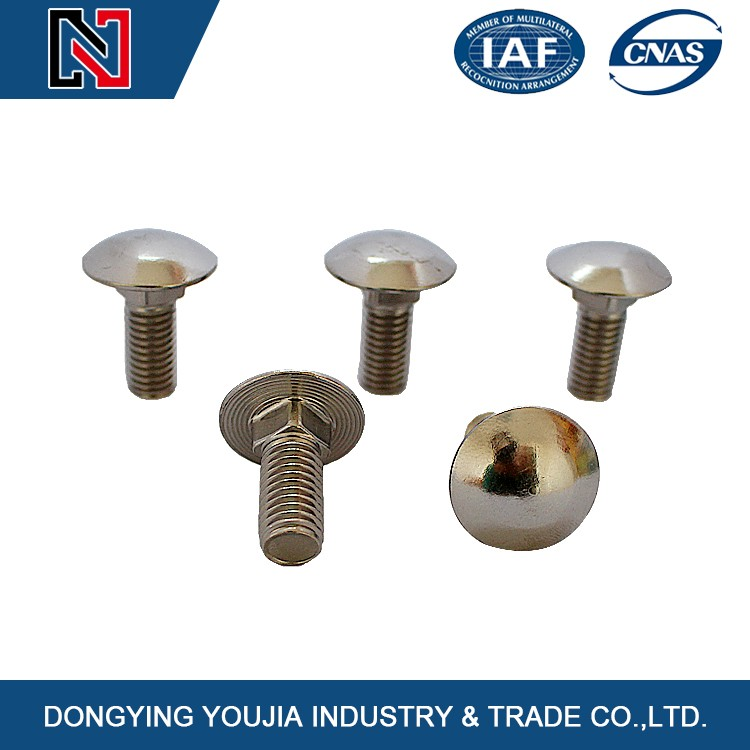 China different types DIN603 mushroom head square neck bolts