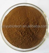 Supply high quality food grade witch hazel hamamelis extract 4:1, 10:1, 20:1