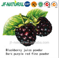 dried fruit powder Blackberry powder