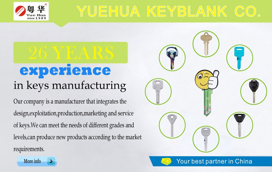 Australia Popular Used Blank Key / hotselling house door key blank TE2, LW4, LW5 customized Door Key Blank