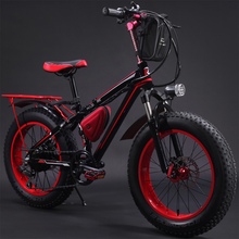 Rich Bit TOP-015 20 inch bike 20 electric fat tire bicycle
