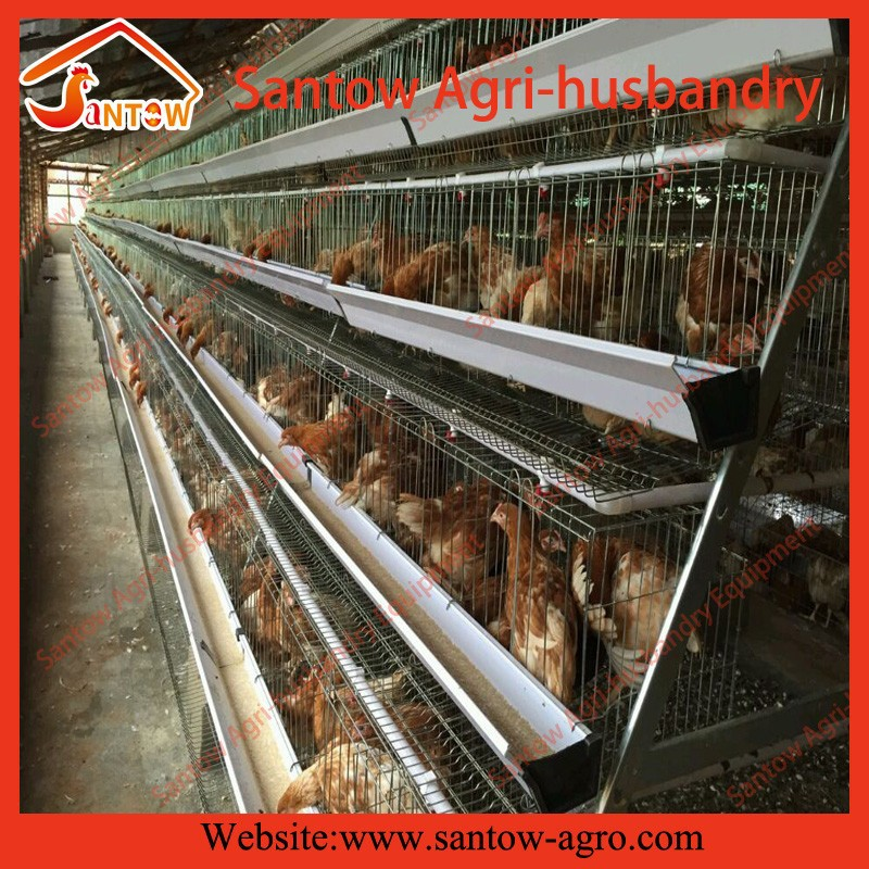 Crazy selling Ladder A Type chicken cage system