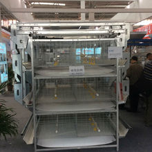 Poulty Farm Use H Type Multi-tier Chicken Layer Cage