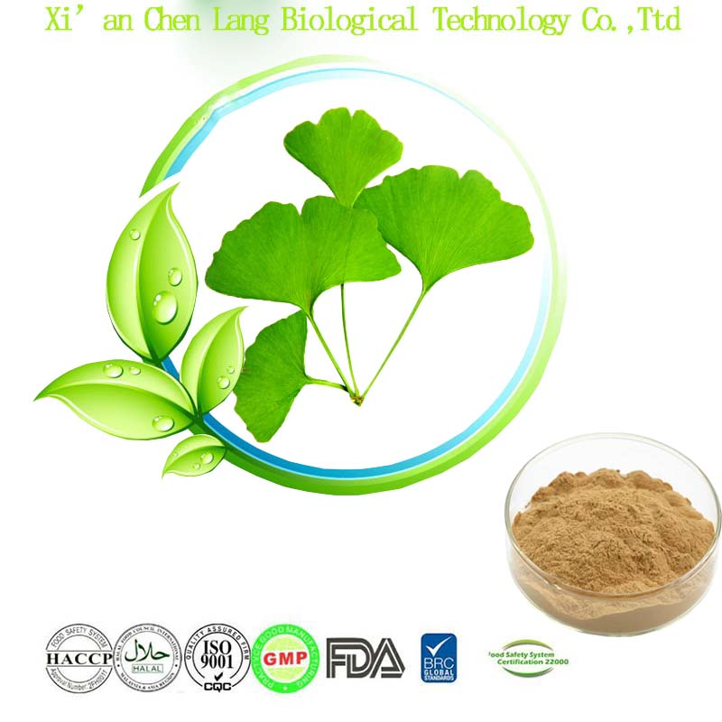 Powder Form and Herbal Extract Ginkgo Biloba Extract egb 761