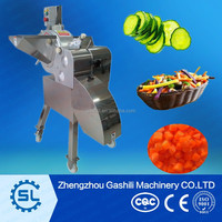 Vegetable Slicer/Shredder/Dicer/Chopper/Vegetable and Fruit Processing Machine