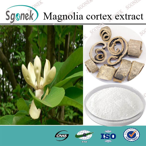 High Quality Magnolia Bark Extract/Cortex Magnolia Officinalis P.E