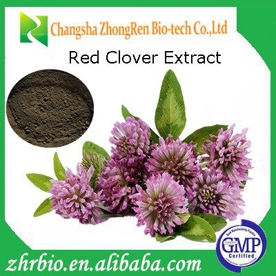 Supply High Quality Red Clover Extract