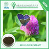 China Manufacture 25% Isoflavones Red Clover Extract with best price