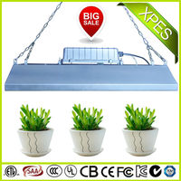 innovative coca seeds plant grow lights for indoor green house for garden