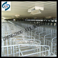 Poultry farm galvanized pipe gestation crates with plastic slatted flooring