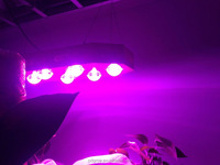 hydroponics controller 660nm 680nm 730nm 740nm full spectrum apollo 6 netherlands led grow light