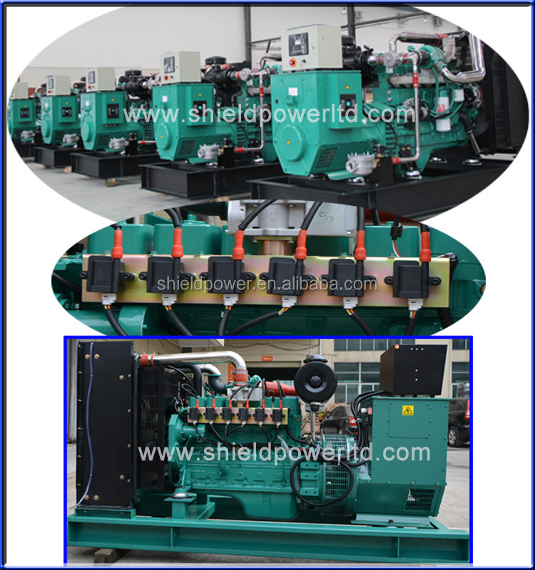 13KVA-500KVA Natural Gas Generator Set