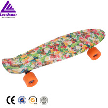 lenwave good design 22 inch plastic fish skateboard