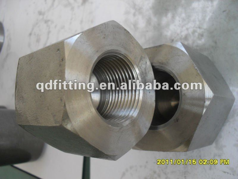Forged 3000lb Stainless Steel Screawed Thread Hexagonl Cap