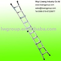 Aluminum Foldable Ladder & Muil Function Ladder (AM0312A)