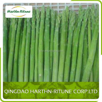 100% mature nature green color frozen asparagus for sale