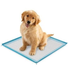Disposable Absorbent Indoor pet puppy dog training pad puppy toilet training Pad