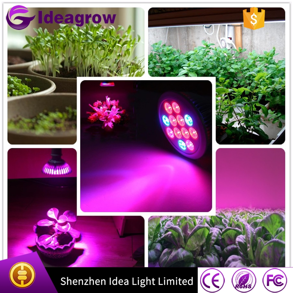 Full Spectrum Hydroponic Light Bulb High Luminosity & Low Power Consumption LED Plant Grow Lights for Indoor Growing Flowers