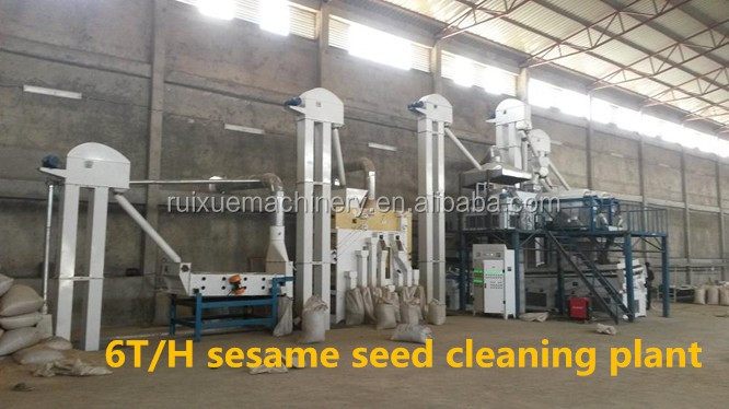 Wheat Barley Buckwheat Seed Cleaner