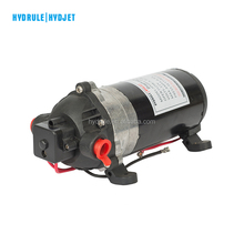 12v high pressure diaphragm pump water pumping machine with price