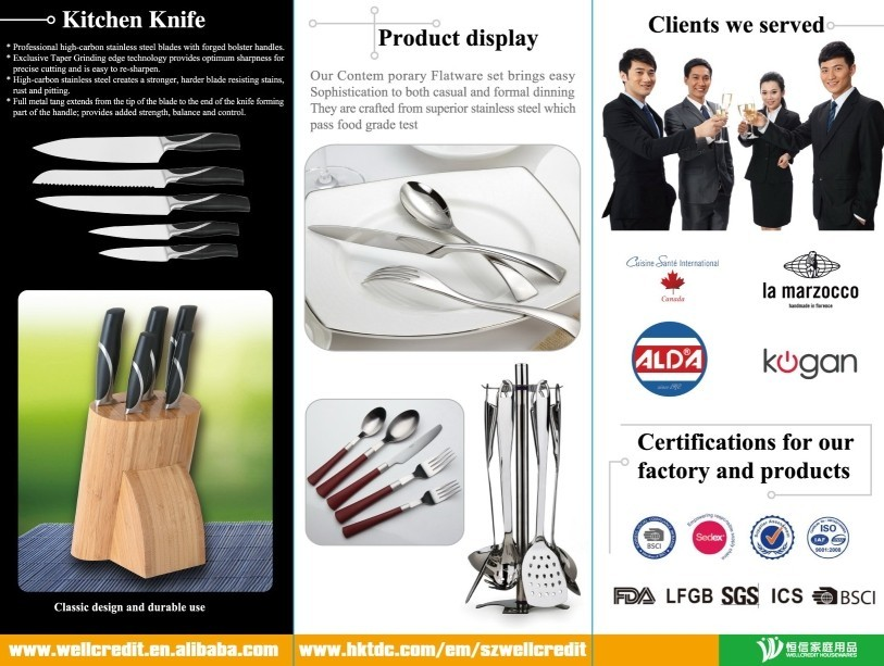 Forged 6pcs Stainless Steel Knife Set with Wooden Handle for Sale