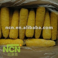 Yellow Glutinous Frozen corn on sale