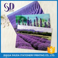 Promotion cartoon card printing 3d lenticular postcard