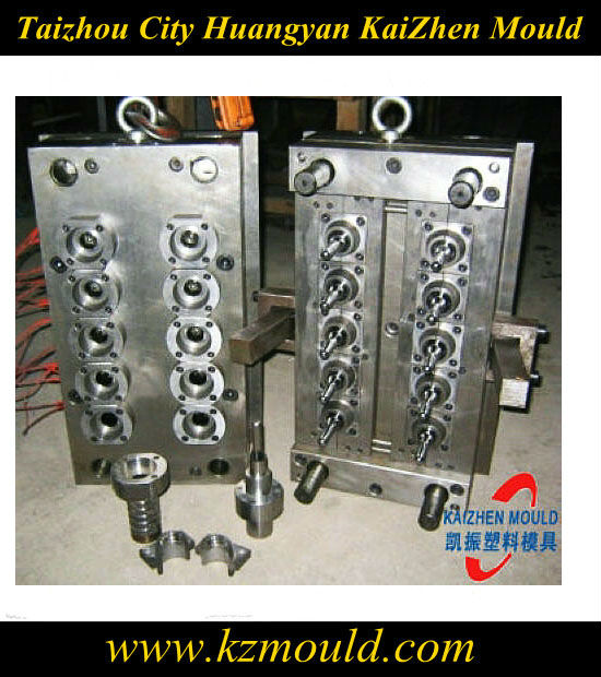 Supply 10 cavity PET preform mould/mold/moulding manufacture
