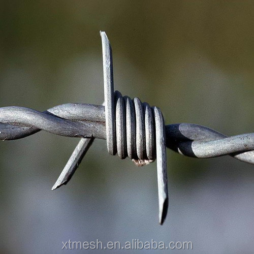 China manufacturers cheap price double twisted barbed wire