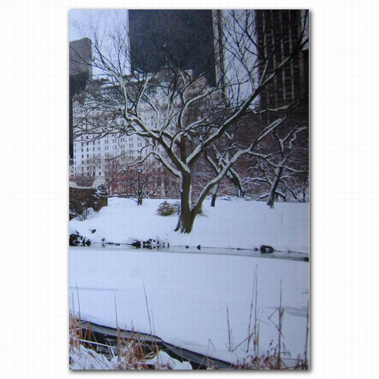 Winter city building snow tree scenery wall decor canvas art print from photo