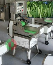 Full-automatic stainless steel water spinach cutter SH-138 VIDEO