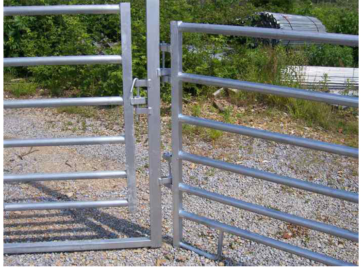 Oval rail cattle panels.jpg