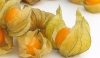 Fresh Physalis