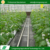 Wholesale eco-friendly hot galvanized steel pipe agricultural pc greenhouse