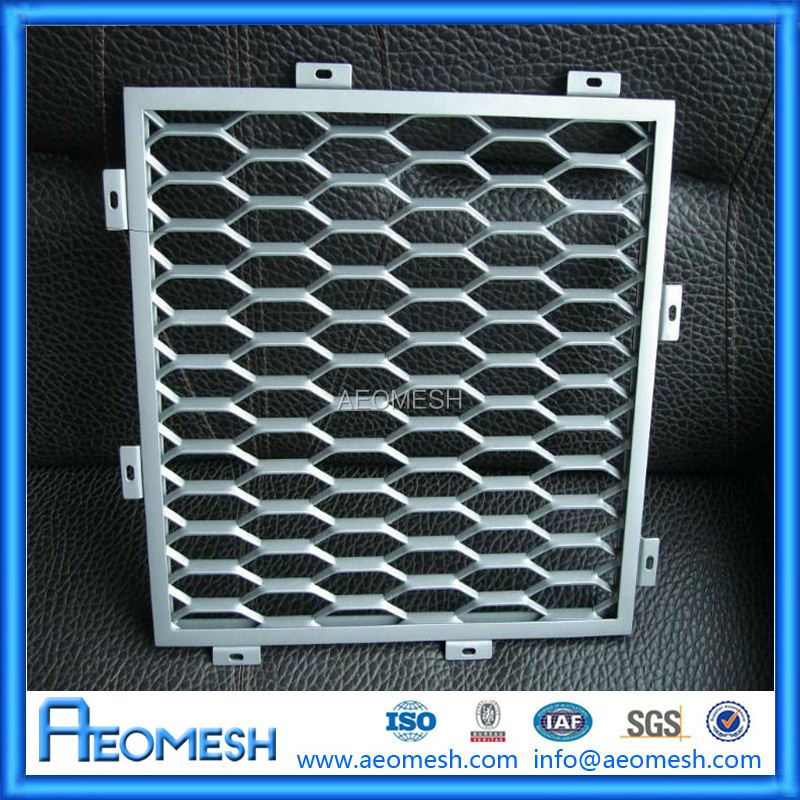Project in China Expanded protecting screen Mesh