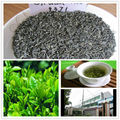Super Quality Chunmee Green Tea 9371 wholesale in good price