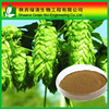 Health Food Triterpenoide Saponis 2.5%, High Quality Black Coho/Triterpenoid Saponis 10%~80% Hplc/High Quality Gotu Kola Extract
