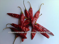 Guntur S 4 Sannam dried red Chilly Exporter to Guadalajara