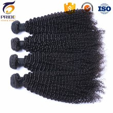 Aliexpress hot selling cheap unprocessed afro kinky curly virgin hair malaysian human hair