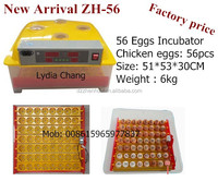 JN7-56 promotion high hatchability chicken egg incubator (Lydia : 0086.15965977837)