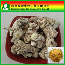 High purity Black angelica extract ligustilide, Angelica Sinensis ( Dong quai ) extract 1% HPLC