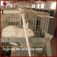 Design Meat Rabbit Cage for Rabbit Farm