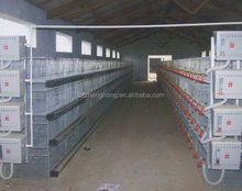 Battery Layer/Broiler Chicken Cage (lydia : 0086-15965977837)