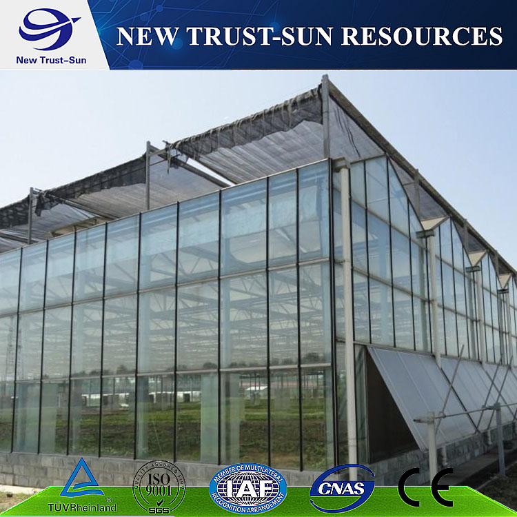High light transmission multi-span glass greenhouse
