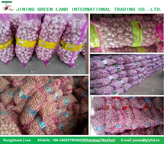 CHINA MESH BAG FRESH DRY GARLIC TO WORLD MARKET FOR SALE
