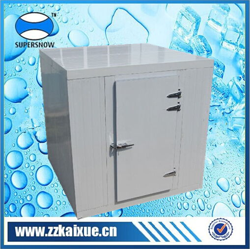 wall type machine fruit and vegetable cold storage cooler