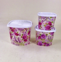 Transparent pp container set
