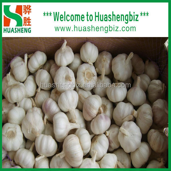 Top quality China fresh natural garlic